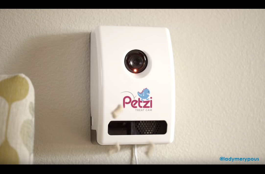 petzi pared
