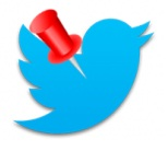 Twit fijado