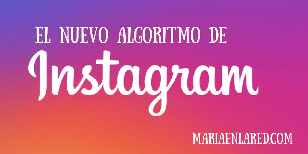 El nuevo algoritmo de Instagram | Maria en la red